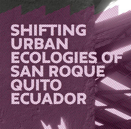 Shifting Urban Ecologies of San Roque Quito Ecuador